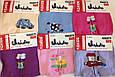 Колготки для малышей Памперс 0-24 мес JuJuBe , фото 2