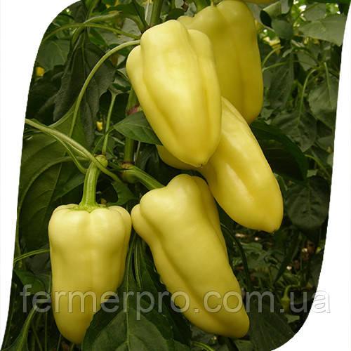 Семена перца Флексум F1 \ Flexum F1 500 семян Seminis