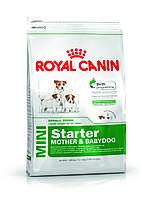 Royal Canin Mini Starter - корм для щенков мелких пород до 2 месяцев, беременных и кормящих сук 1 кг