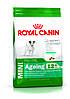 Royal Canin Mini Ageing 12+ - корм для собак мелких пород старше 12 лет  1,5 кг