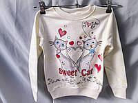 Батник оптом для девочек 2-8 лет, березка с принтом кошкии стразами, карманы, разный цвет, фото 1