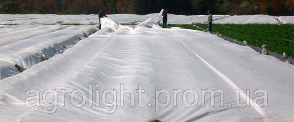 Агроволокно. Плотность 50г/кв.м. 3,2м*100м белое