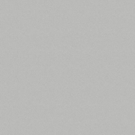 D881 PE АЛЮМИНИЙ 2800х2070х16 мм ДСП ламинированное
