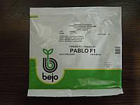 Свекла Пабло 5000с