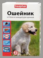 Нашийник Біфар Біо д/собак, цуценят з 2 міс. 65см