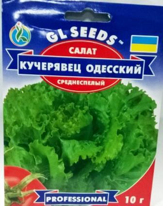 Салат Кучерявець Одеський 10г (GL Seeds)