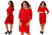 Нарядное и очень красивое гипюровое платье большого размера 50-54  короткое до колена красное