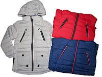 Куртка демисезонная для девочек, Grace, размеры 134-164, арт. 61186