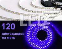 5 метров — 120 д/м, светодиодная лента 3528, синий, IP20