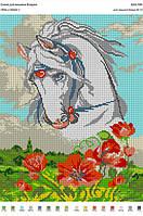 БА3-184 Конь в маках. Вишиванка. Схема на ткани для вышивания бисером