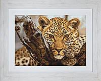 G525 Леопард. Luca-S. Набор для вышивания нитками
