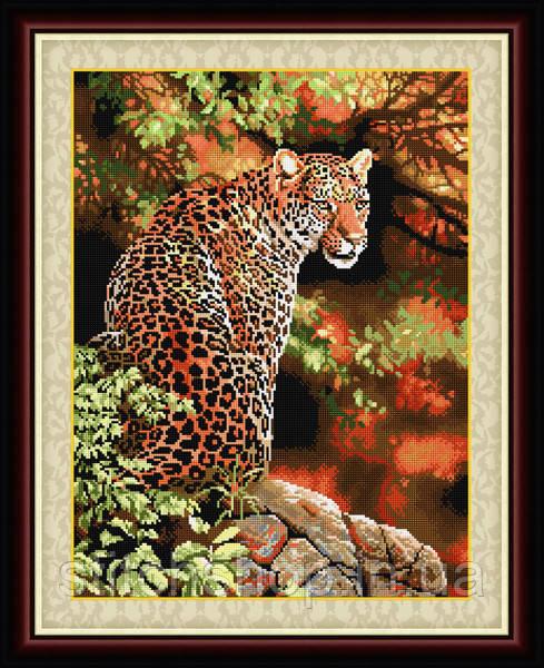 TT014 Взгляд леопарда. LasKo. Наборы для рисования камнями (на холсте).