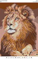 БА2-50 Лев. Вишиванка. Схема на ткани для вышивания бисером