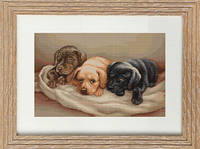G434 Три собачки. Luca-S. Набор для вышивания нитками