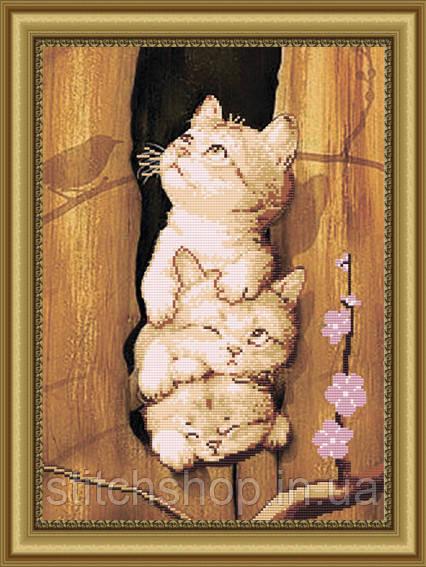 VKA3015 Это мы - коты!. ArtSolo. Схема на ткани для вышивания бисером