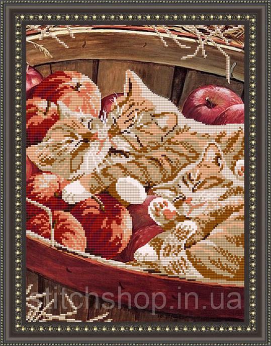 VKA3018 Котята в корзине. ArtSolo. Схема на ткани для вышивания бисером