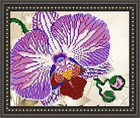 VKA4105 Орхидея. ArtSolo. Схема на ткани для вышивания бисером