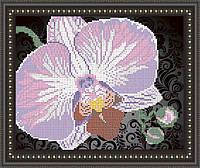 VKA4105B Орхидея на черном. ArtSolo. Схема на ткани для вышивания бисером