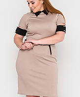 Платье с черным воротником и манжетами | 2111 sk