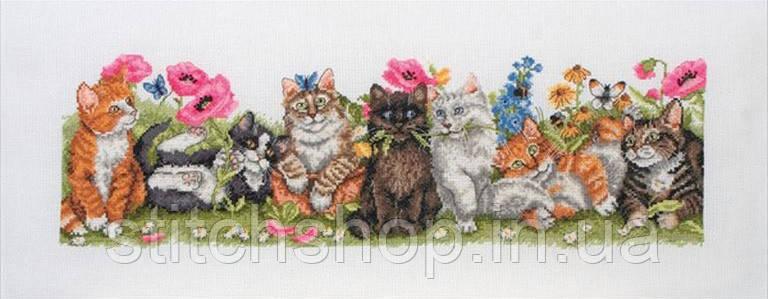 "PCE729  ""Котята в ряд (Kittens In A Row)"" ANCHOR. Набор для вышивания нитками"