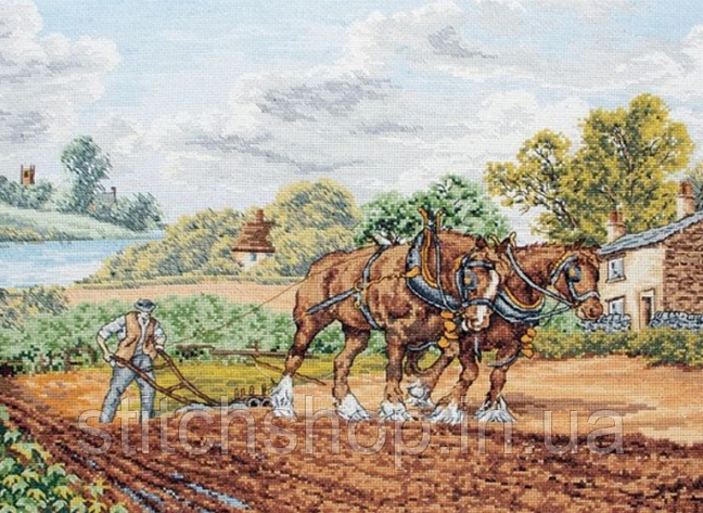 "PCE949 ""Лошади Шира (Shire Horses )"" ANCHOR. Набор для вышивания нитками"