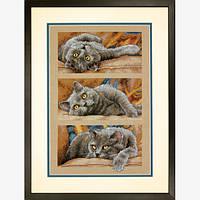 """70-35301 """"Кот Макс//Max the Cat"""" DIMENSIONS. DIMENSIONS. Набор для вышивания нитками"""