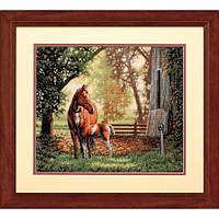 "35260 ""Лошадь с жеребёнком//Mare and Foal"" DIMENSIONS Gold Collection. DIMENSIONS. Набор для вышивания нитками"