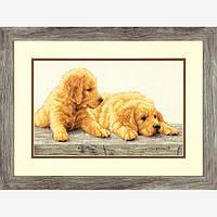 """70-35309 """"Щенки золотистого ретривера//Golden Retriever Puppies"""" DIMENSIONS. DIMENSIONS. Набор для вышивания нитками"""
