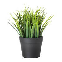 Удобрения для комнатных и декоративных растений