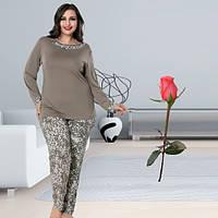 Женская пижама из турецкого трикотажа Большой размер Т 103