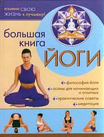 Большая книга йоги. Александр Севостьянов