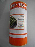 Семена  арбуза 0,5 кг сорт  Галактика в банке
