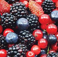 Лесные ягоды (Berry Mix)