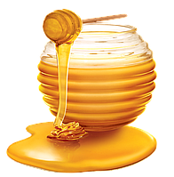 Мёд (Honey)
