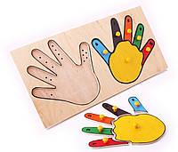 Игра для детей Рамка и вкладыши - Руки-пальчики