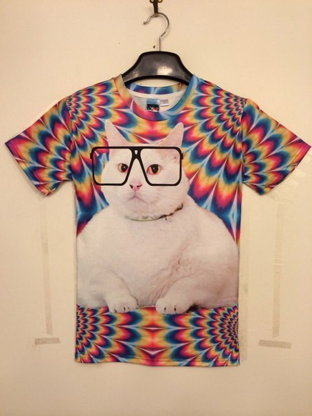 T-shirt ISwag3D футболка с котом в очках