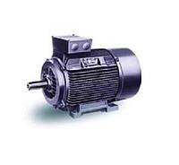 Электродвигатели асинхронные 3-фазные серии АИР, степень защиты IP55