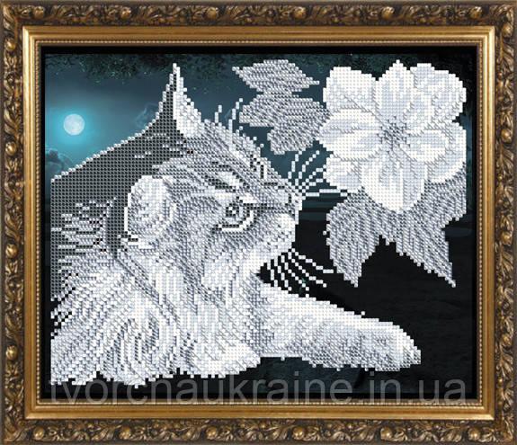 Авторская канва для вышивки бисером «Кот с магнолией»