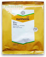 Семена Редис Сора  250 граммов Nunhems