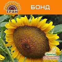 Семена подсолнечника Бонд (105 – 110 дн., гранстар)