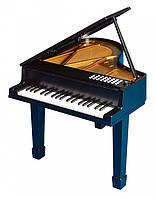 Детское игрушечное пианино PlayGo Іграшкове піаніно (чорне)