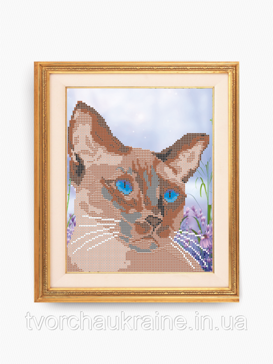 Авторская канва для вышивки бисером «Сиамский кот»