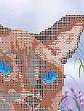 Авторская канва для вышивки бисером «Сиамский кот», фото 2