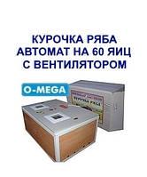 Инкубаторы автоматические Курочка Ряба на 60 яиц с вентилятором