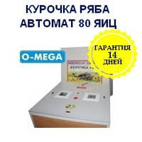 Автоматические инкубаторы Курочка Ряба на 80 яиц