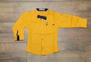 Детские рубашки 1- 5 лет