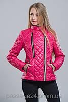 Куртка женская (4 цвета), 42-48