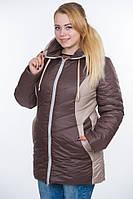 Тёплые женские куртки больших размеров, (6 цветов)