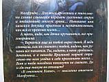 Вилар С. Ведьма (б/у)., фото 6