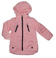 Куртка  для девочек ,оптом, Grace ,98-128 рр., арт. G61182